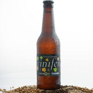 Cerveza artesana Vinífera